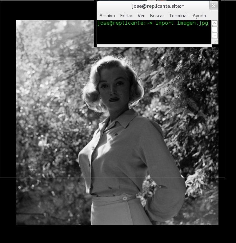 Capturas de pantalla con el comando import de ImageMagick