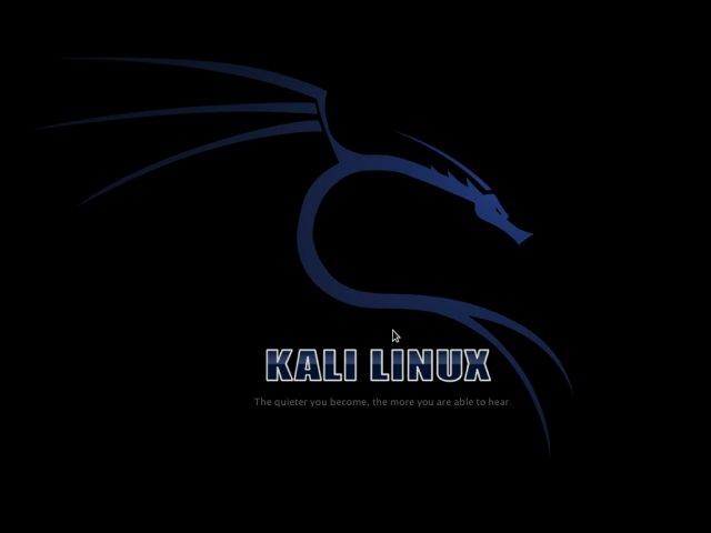 kali_image2